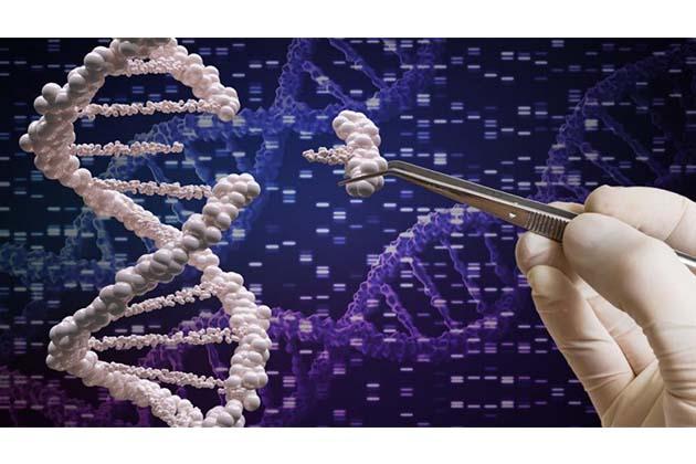 Editing Gene