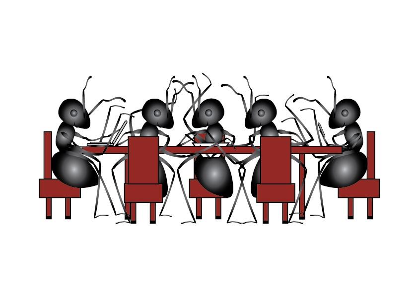 Ant Society