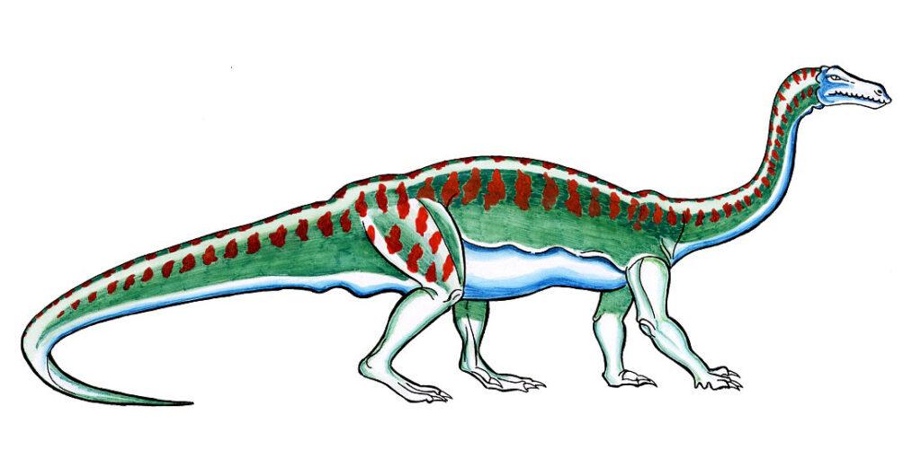 Largest Dinosaur